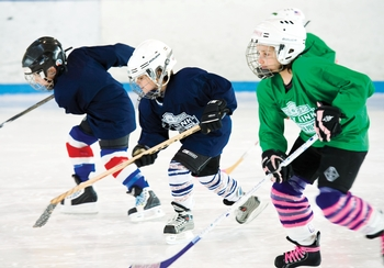 Adult hockey clinics in new york city